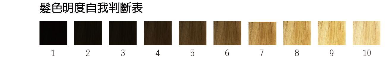 髮色明度自我判斷表