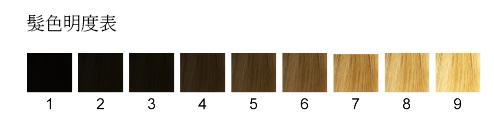 髮色明度對照表